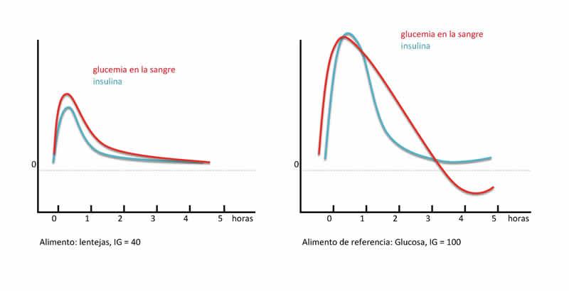 La importancia del índice glucémico y los carbohidratos